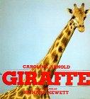 9780688070700: Giraffe