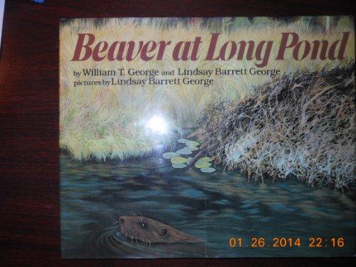 9780688071066: Beaver at Long Pond