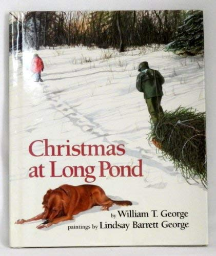 9780688092153: Christmas at Long Pond