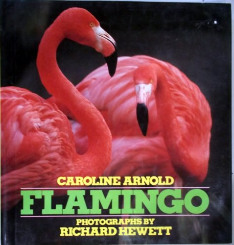 Flamingo: Arnold, Caroline