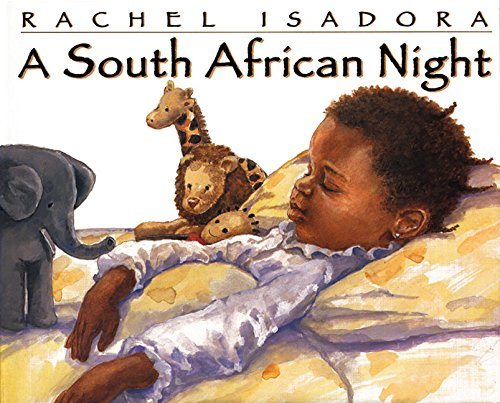 9780688113896: A South African Night