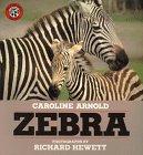 9780688122737: Zebra