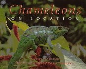 9780688125370: Chameleons: On Location