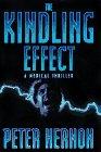 The Kindling Effect: A Medical Thriller: Hernon, Peter