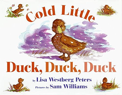 9780688161781: Cold Little Duck, Duck, Duck (Avenues)