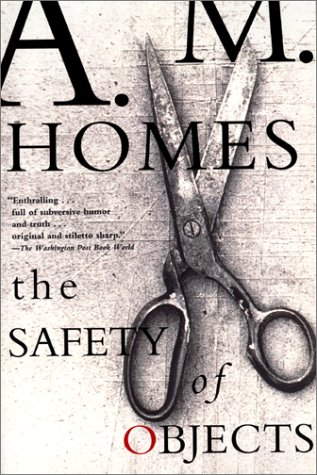 9780688170837: The Safety of Objects