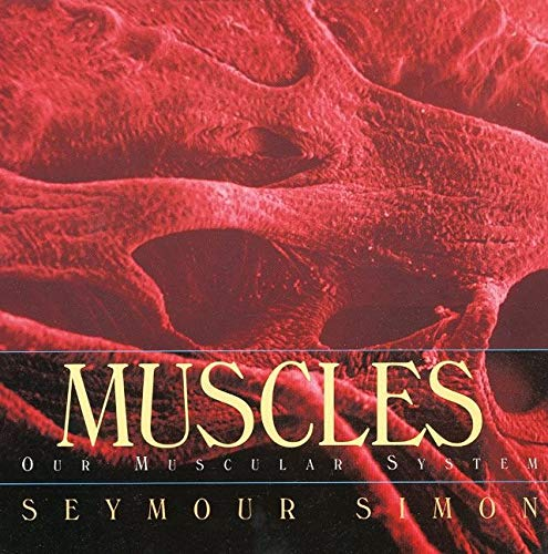 9780688177201: Muscles: Our Muscular System