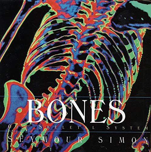 9780688177218: Bones: Our Skeletal System