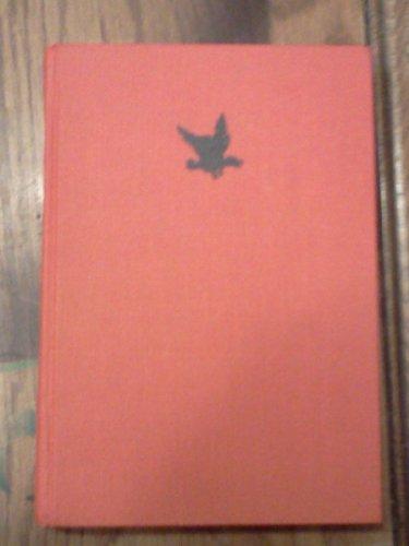 9780688221430: The Magic Stone (English and Dutch Edition)
