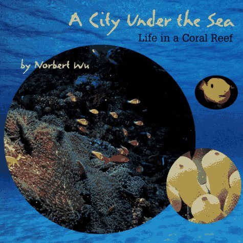 A City Under The Sea / Life In A Coral Reef