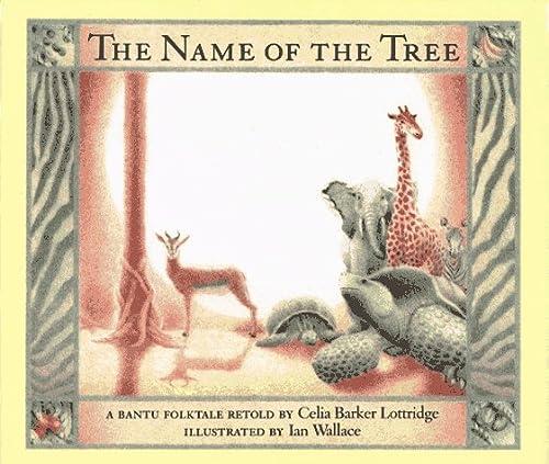 9780689504907: The Name of the Tree: A Bantu Folktale