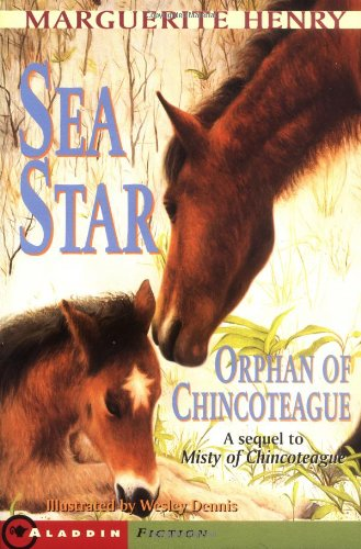 9780689715303: Sea Star Orph of Chincoteague