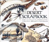 9780689806780: A Desert Scrapbook: Dawn to Dusk in the Sonoran Desert