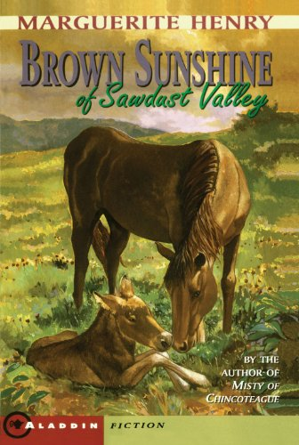 9780689807794: Brown Sunshine of Sawdust Valley