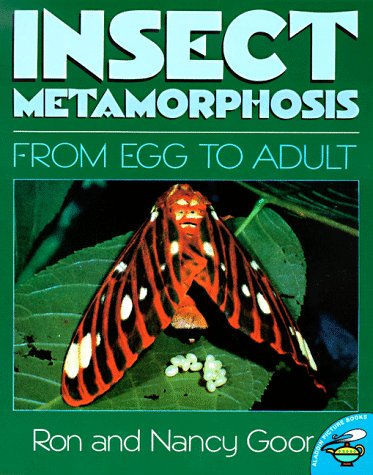 9780689821967: Insect Metamorphosis (Aladdin Picture Books)