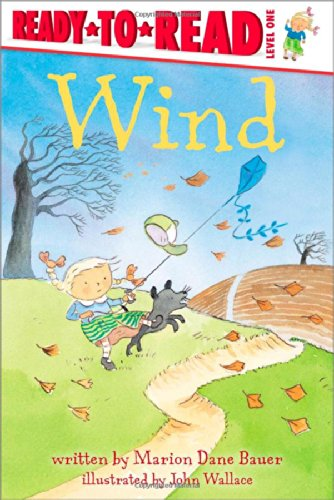 9780689854439: Wind