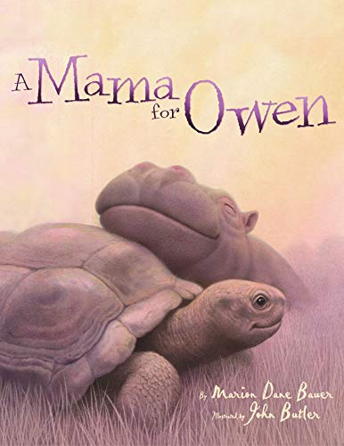 9780689857874: A Mama for Owen (Rise and Shine)