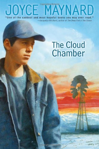 9780689871528: The Cloud Chamber