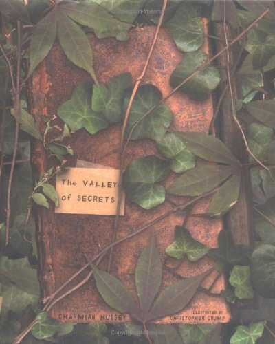 9780689878626: The Valley of Secrets