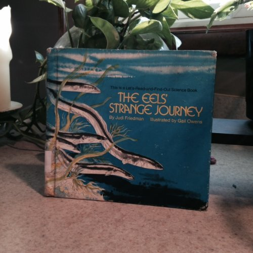 The Eel's Strange Journey (A Let's -Read-&-Find Out Science Book) (0690010079) by Friedman, Judi; Owens, Gail