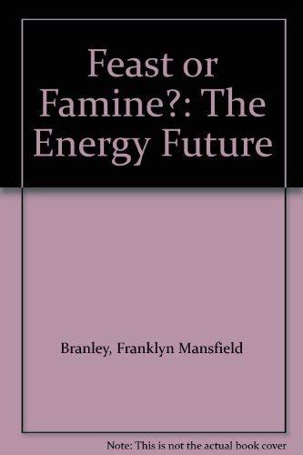 9780690040401: Feast or Famine?: The Energy Future