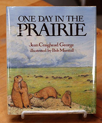 9780690045666: One Day in the Prairie