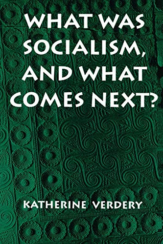 9780691011325: What Was Socialism, and What Comes Next? (Princeton Studies in Culture/Power/History)