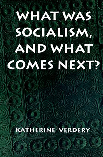 9780691011332: What Was Socialism, and What Comes Next? (Princeton Studies in Culture/Power/History)