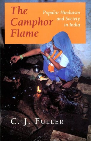 9780691020846: The Camphor Flame: Popular Hinduism and Society in India (Princeton Paperbacks)