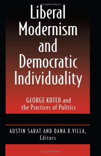 9780691025964: Liberal Modernism and Democratic Individuality