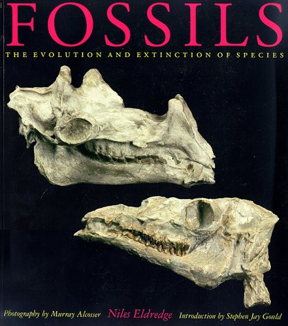 Fossils: Niles Eldredge; Murray