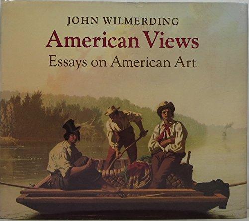 9780691040905: American Views: Essays on American Art