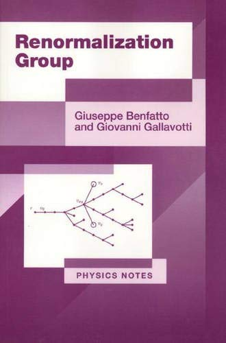 9780691044477: Renormalization Group (Physics Notes)