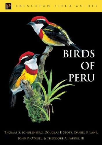 9780691049151: Birds of Peru (Princeton Field Guides)