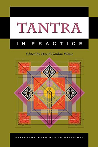 9780691057781: Tantra in Practice