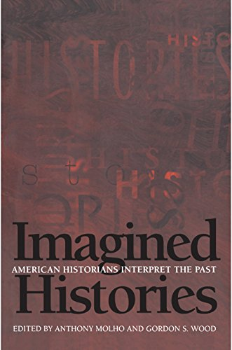 9780691058108: Imagined Histories