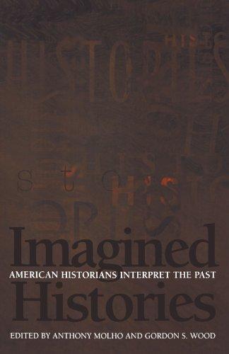 9780691058115: Imagined Histories: American Historians Interpret the Past