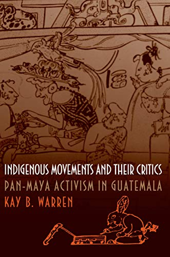 9780691058818: Indigenous Movements and Their Critics