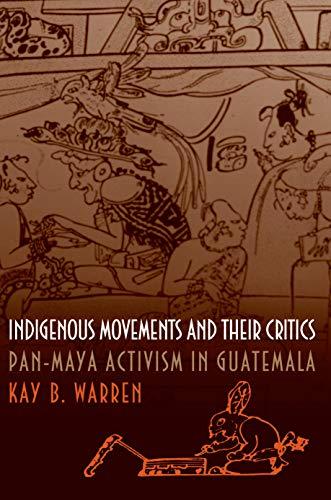9780691058825: Indigenous Movements and Their Critics: Pan-Maya Activism in Guatemala
