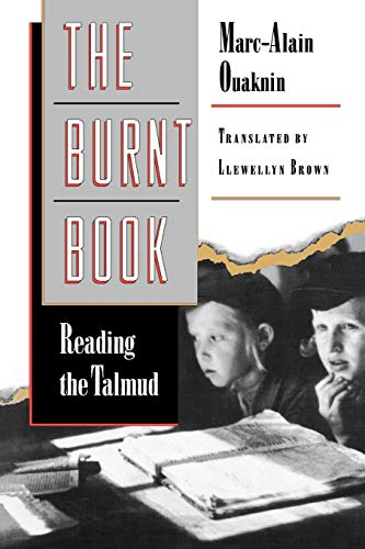 9780691059204: The Burnt Book