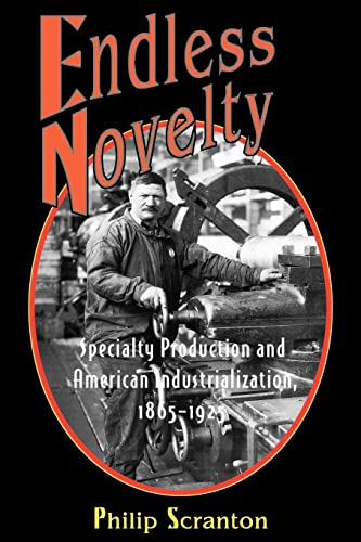 9780691070186: Endless Novelty: Specialty Production and American Industrialization, 1865-1925 (Princeton Paperbacks)