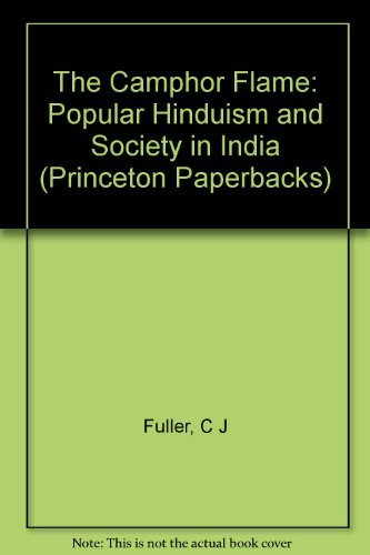 9780691074047: The Camphor Flame: Popular Hinduism and Society in India (Princeton Paperbacks)