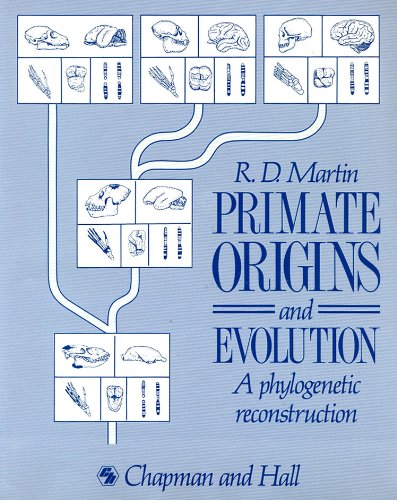 9780691085654: Primate Origins and Evolution: A Phylogenetic Reconstruction