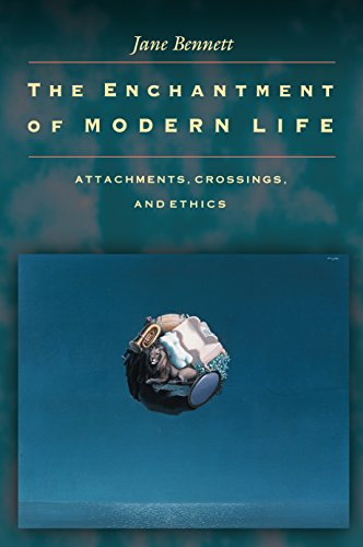 9780691088136: The Enchantment of Modern Life: Attachments, Crossings, and Ethics.