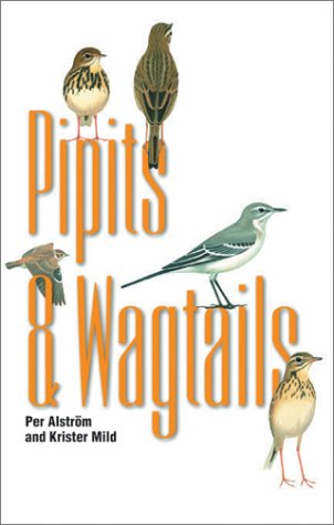 9780691088341: Pipits and Wagtails