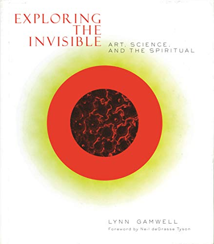 9780691089720: Exploring the Invisible: Art, Science, and the Spiritual
