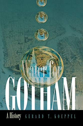 9780691089768: Water for Gotham: A History