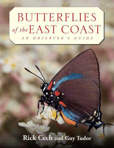 9780691090566: Butterflies of the East Coast: An Observer's Guide