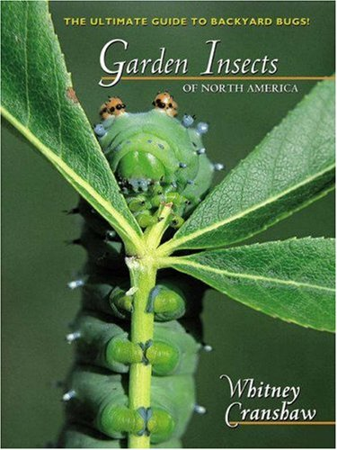 9780691095608: Garden Insects of North America: The Ultimate Guide to Backyard Bugs (Princeton Field Guides)