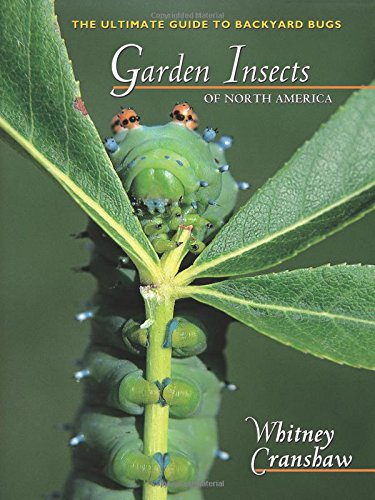 9780691095615: Garden Insects of North America: The Ultimate Guide to Backyard Bugs (Princeton Field Guides)